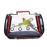 facynde gabbia per uccelli trasportino da viaggio per pappagalli gabbia leggera portatile borsa trasparente per animali domestici per parrocchetto di piccola taglia