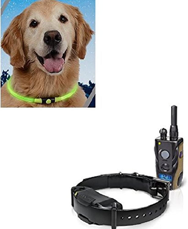 Dogtra 1900S 3 4 Mile Range 1 Dog Training Collar System with Free Nite Ize Glow Necklace
