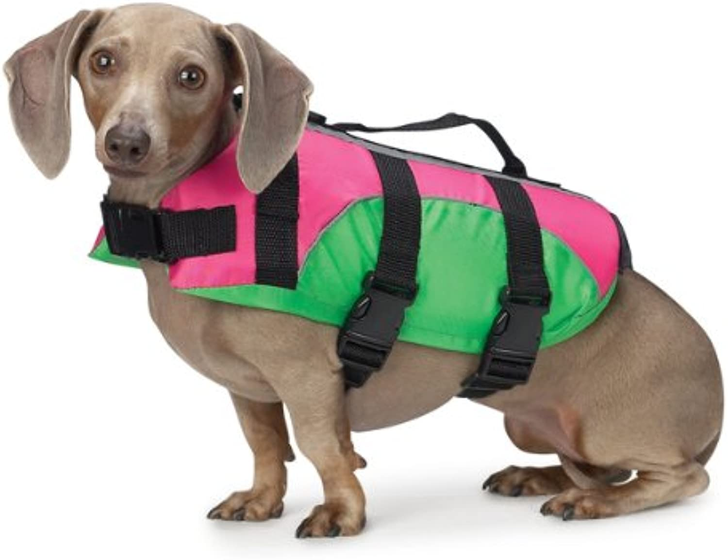 East Side Collection Fashion 20Inch Dog Preserver, Large, Pink Green