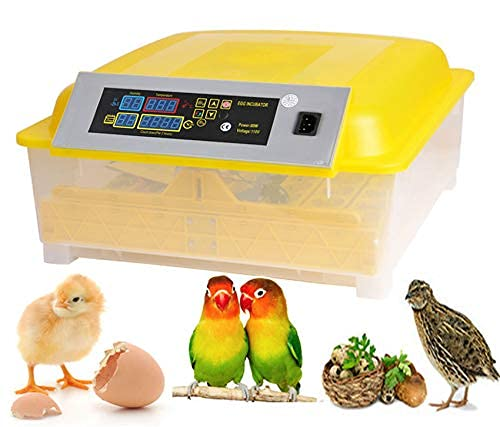 HHD | Clear Egg Incubator, Fully Automatic Digital Poultry Hatching Machine, Temperature Control & Automatic Egg Turner, Mini 48 Egg Incubator Breeder for Chicken, Ducks, Birds & More