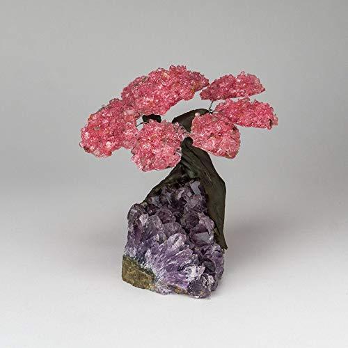 Marcopolo Gems 6 Pétalo de Cuarzo Rosa Árbol de Piedras Preciosas agrupado en Matriz de Cuarzo Claro (El árbol de los bonsais de relajación)