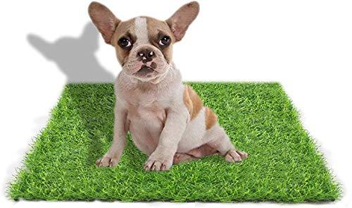 Kunstrasenteppich für Hunde, Innen- und Außenbereich, Kunstrasen für Hunde, Töpfchentraining, Terrasse, Rasendekoration, 59,9 x 49,8 cm