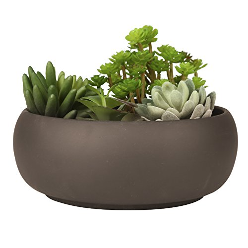 Modern Unglazed Round Ceramic Succulent Cactus Planter Pot with Brown Matte Finish