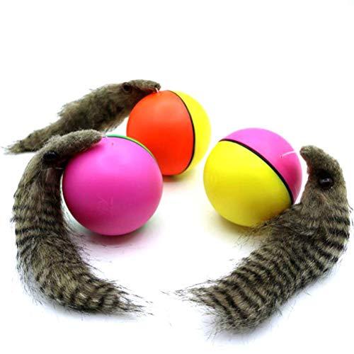 Elektrischer Biberball für Haustiere, Spielzeug für Haustier Hund Katze Spielzeug Kinder Badespielzeug Zufällige Lieferung