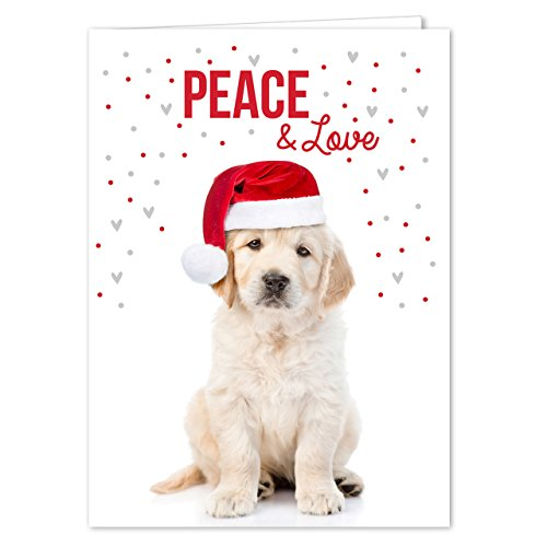 Labrador Love Holiday Card Pack / 25 Cards And Envelopes Pack/Festive Santa Hat Puppy Design With Greeting Inside/Dog Christmas And New Year Cards