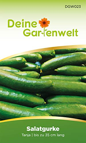 Salatgurke Tanja Gurkensamen | Samen für Gurken | Salatgurke | Salatgurkensamen | Kastengurke