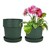 Mengxin 8 Piezas 23CM Macetas Plastico Pequeñas con Platillo Jardineras Exterior Verde Planta Plastico Redonda para Plantas, Flores y Jardinería de Interior (Grande)