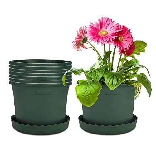 Mengxin 8 Pacchi 23CM Vaso per Piante in Plastica Vasi da Fiori con Piattino Piccoli Vasetti per Piantine Verde per Interni Esterni Aloe, Erba, Orchidea (Grande)