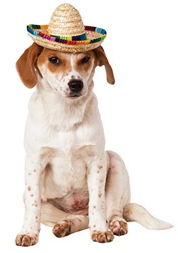 Rubie 's Offizielles Sombrero Pet Hunde Kostüm–Klein/mittel