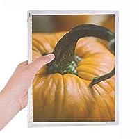 新鮮なカボチャ絵の自然写真 硬質プラスチックルーズリーフノートノート