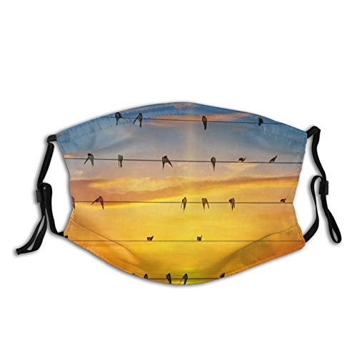 Comfortable fashion Face Mask Sky Sun Glow Wires Birds Swallows Swallows Sun-Proof Fashion Bandana Headwear for Fishing