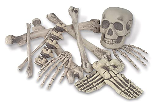 Skeleton Decoration Bone Décor Beistle 12 Piece Plastic Novelty Skeleton Bones and Skull Horror Haunted House Prop Decorations Spooky Halloween Party Supplies, 6'-16', Off White/Gray