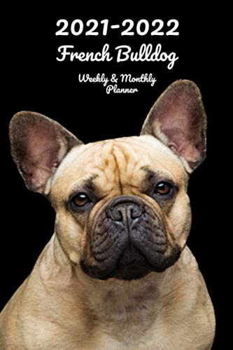 2021-2022 French Bulldog Weekly & Monthly Planner: 2-Year Pocket Calendar | 26 Months | 152 pages 6x9 in. | Diary | Organizer | Agenda | Appointment | For Dog Lovers