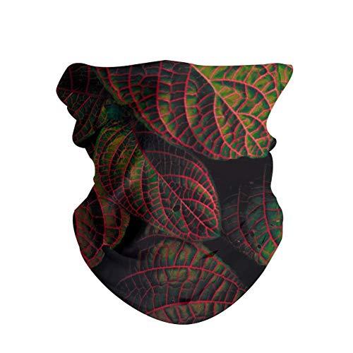 HAOZI 2 piezas para la cabeza para deportes al aire libre, bufanda mágica, diadema elástica de alta resistencia a los rayos UV, atlética para la cabeza para hombre y mujer, color Hojas talladas, tamaño 50 CM x 25 CM