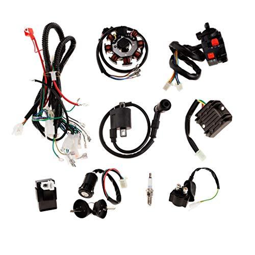 LILICEN CY Cableado de Lavado de Lavado de Electricidad Completo CDI CDI Spark Plug para 150-250cc Quad Bike Buggy Gokart