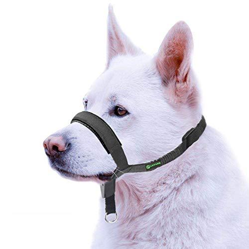 ILEPARK Gepolsterter Hundehalfter aus Leder - Hundehalsband-Halfter der Ziehen verhindert, Einstellbar, Maulkorb Hunde (M, Schwarz)
