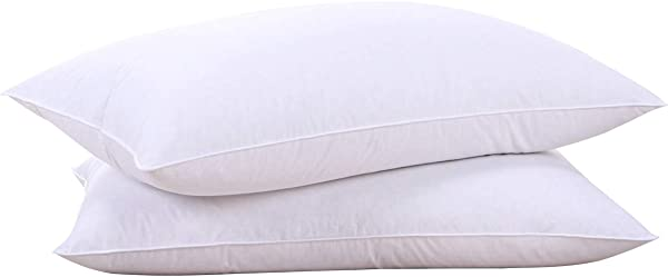 Puredown Natural Goose Down Feather White Pillow Inserts 100 Egyptian Cotton Fabric Cover Bed Pillows Set Of 2 Standard Size