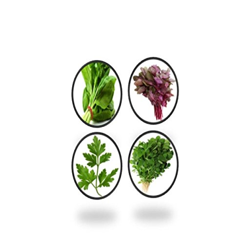 Tradico Leaf grün veg samen - palak, dhaniya, methi, lal choualai saag-4 pkte von Super Agri Green (1000 + samen)