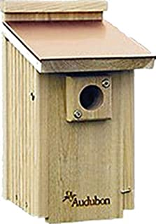 Best bluebird house audubon Reviews