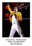 Freddie Mercury Poster – Tribute – signiert (Kopie) #