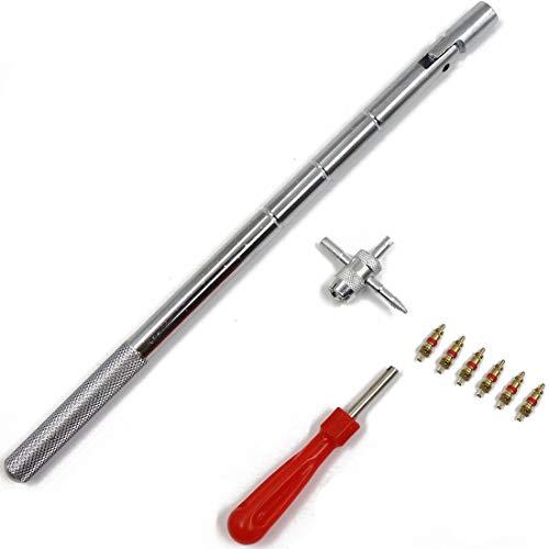 Leyangamz 9 Stücke Ventil Werkzeug Ventileinsatz Reparatur Entferner Reparaturwerkzeug mit 6 Stücke Ventilkerne Doppelkopf Reifen Ventileinsatz Reparatur-Werkzeuge für Motorrad, Auto, Fahrräder