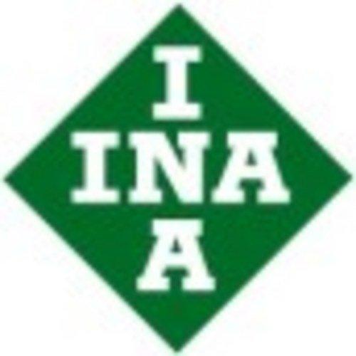 INA 428 0161 10 Arbre à cames