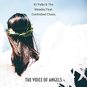 The Voice of Angels