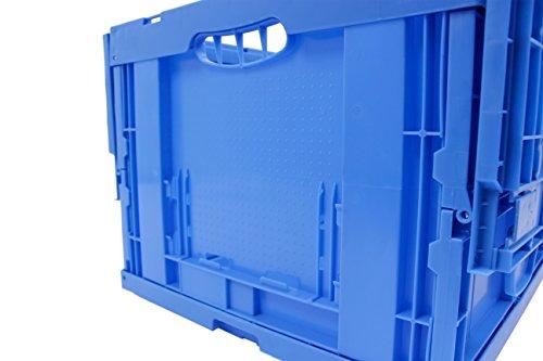 1 Stück Transportbox Foxybox - 8