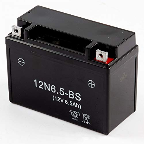 Batterie (BTTY012) für Lexmoto Aspire 50 E4 TD50Q-2 (#012)