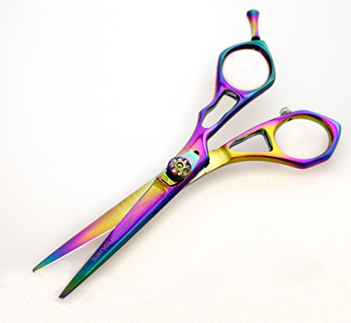 Ciseaux de coiffeur, ciseaux à cheveux, Accrocheur Poignées (14 cm – 14 cm) avec étui de présentation