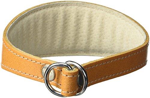 BBD Pet Products - Collare per Whippet, taglia unica, 3/4 x 30 a 40 cm, colore: Marrone chiaro