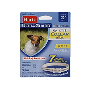 Hartz UltraGuard Flea & Tick Collar for Dogs and Puppies, 7 Month Flea and Tick Protection and Prevention Per Collar, Reflective, Up to 20 Inch Neck