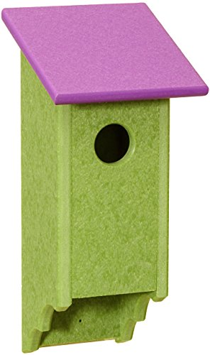 Recycled Plastic Amish Bluebird House, Handcrafted in The USA from Easy to Clean, Eco-Friendly Materials (Purple & Green)