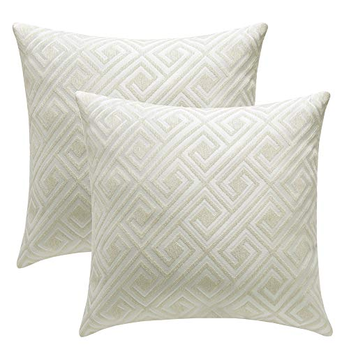 Decorative Throw Pillow Covers Farmhouse Pillowcases Indoor Outdoor 18 x 18 inches Set of 2 Cushion Cover for Sofa Home Decor Throw Pillow Case Sofa Zippered Pillowcase (Rice white, 20x20 inches)