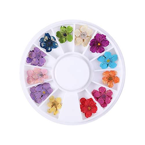 Ashui Stickers Ongles Soin Des Ongles French Manucure Stickers Ongles Fleurs SéChéEs Par Les Ongles, Gypsophile, Fleur Du Soleil, Jonquille, Cinq PéTales, Petites Fleurs