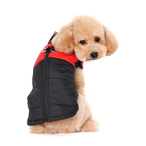 Ectkuee Petit Manteau imperméable pour Chien Veste d'hiver rembourré matelassé Doudoune pour Chien Pet Chiot vêtements Assortis Tailles et Couleurs