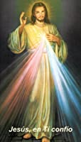 Divine Mercyシャプレスペイン語Holy Prayerカード財布サイズ