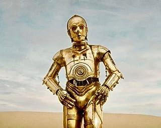 直輸入、写真(ポスター並みサイズ)、「スター・ウォーズ」C-3PO、#91096...