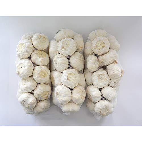 金郷種ホワイト にんにく種球 1kg×3ネット 中国産