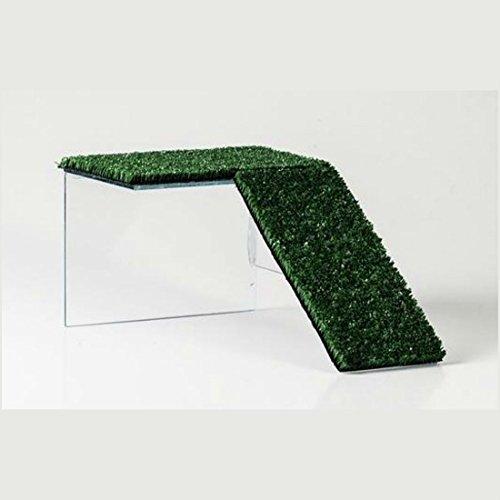 HappyZooMascotas Rampa Plataforma De Cristal para Tortuga - Tamaño Mediano - 16x12x25 cm