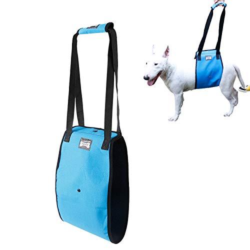 Tineer Arnés para Levantar Perros para Perros de Edad Avanzada o discapacitados - Soporte Sling Ayuda Posterior Piernas débiles Levántese, camine, suba escaleras (L, Azul)