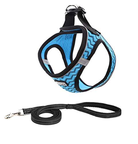 Brustgeschirre Reflektierend Hund Atmungsaktiv mit Leine Hundgeschirre Set Verstellbar Klein No-Pull Laufgeschirre für welpen (Blau, S(36-39cm))