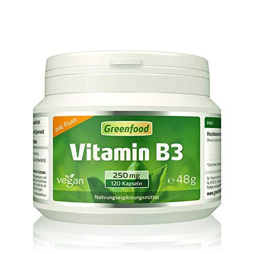 Vitamin B3 (Niacin), 250 mg, extra hochdosiert, 120 Kapseln, vegan – wichtig für die Serotonin-Produktion (Glückshormon) und die Durchblutung. OHNE künstliche Zusätze. Ohne Gentechnik. Vegan.