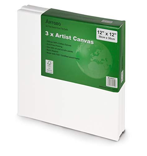 Artgeo FSC, 30cm x 30cm Kunst Leinwand 3 Packung