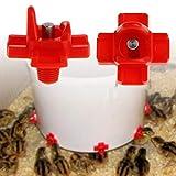 ecmqs Mangiatoia per pollo–dispositivi a bere automatici Fattoria La Pollame SISTEMA D' acqua forniture di Abbeveratoio