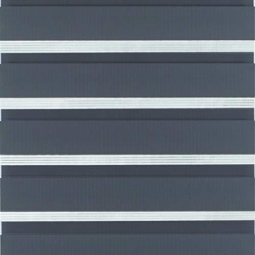 Klöckner Flächenvorhang Day + Night (1 Stück), Schiebegardine, Regulierter Lichteinfall, Grau, 60 x 245 cm