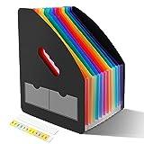 LOETAD Clasificadores Carpetas de Acordeón Vertical Portátil Organizador de Archivos Retráctil con 13 Compartimientos Gran Capacidad