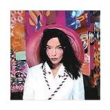 Björk Albumcover Leinwand Poster Schlafzimmer Dekor Sport