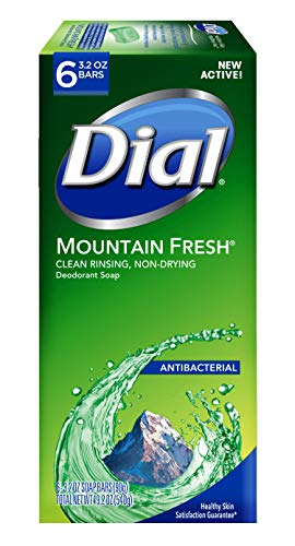 Dial Antibacterial Bar Soap $9.99 Reg.$41.88(76% Off)