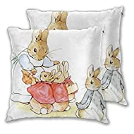 Nursery Characters Peter Rabbit Beatrix Potter Throw Pillow Case Cushion Covers Square 18x18 Inch of...